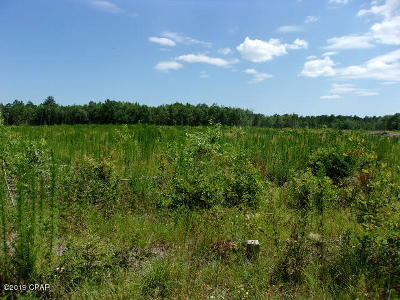 Holmes County Residential Lots & Land For Sale: T J Mitchell Road