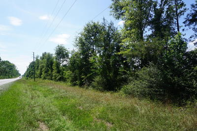 Marianna Residential Lots & Land For Sale: Hwy 162