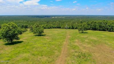 Holmes County Residential Lots & Land For Sale: 40 Acres Bowers Road
