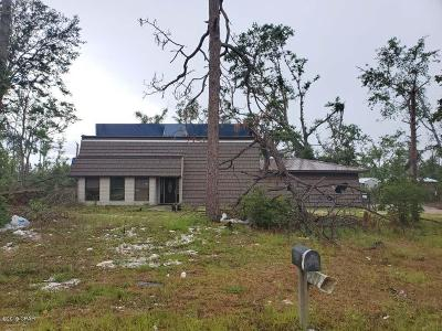 Bay County Single Family Home For Sale: 6836 Davis Road