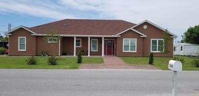 Single Family Home For Sale: 307 Evergreen Street