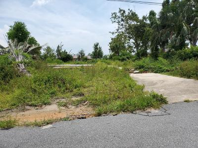 Bay County Residential Lots & Land For Sale: 4002 E 9th Street