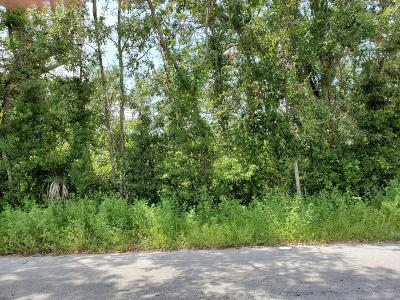 Bay County Residential Lots & Land For Sale: 923 E 10th Street