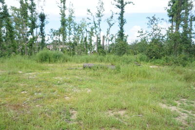 Commercial Lots & Land For Sale: 90 Highway
