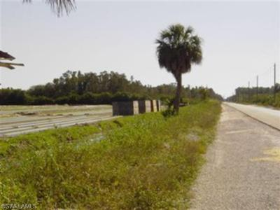 Bonita Springs Residential Lots & Land For Sale: Bonita Grande Dr