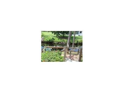 Bonita Farms Single Family Home For Sale: 27297 Jolly Roger Ln