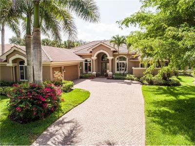 Estero Single Family Home For Sale: 22981 Shady Knoll Dr