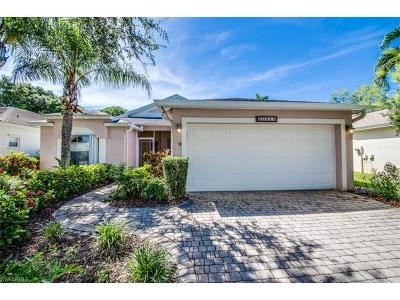 Estero Single Family Home For Sale: 20911 Rivers Ford