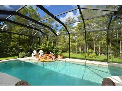 Naples Single Family Home For Sale: 2941 2nd St NE