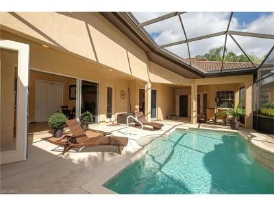 Estero Single Family Home For Sale: 20076 Palermo Lake Ct