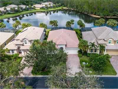 Estero Single Family Home For Sale: 9096 Falling Leaf Dr
