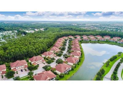 Bonita Springs Condo/Townhouse For Sale: 26479 Lucky Stone Rd #101