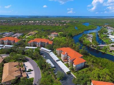 Estero Condo/Townhouse For Sale: 20918 Island Sound Cir #402