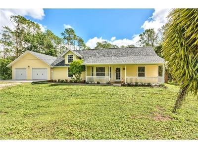 Bonita Springs Single Family Home For Sale: 25441 Pinson Dr