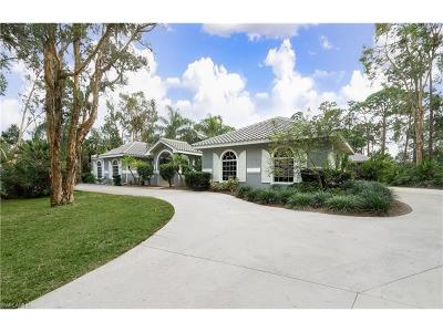 Fort Myers Single Family Home For Sale: 13529 Brynwood Ln