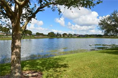 Lee County Single Family Home For Sale: 10375 Flat Stone Loop