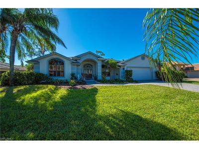 Bonita Springs Single Family Home For Sale: 9965 Treasure Cay Ln