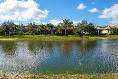 Estero Single Family Home For Sale: 20076 Palermo Lake Ct