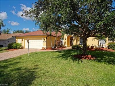 Fort Myers Single Family Home For Sale: 19279 Pine Run Ln