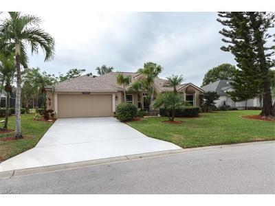 Estero Single Family Home For Sale: 20860 Andiron Pl