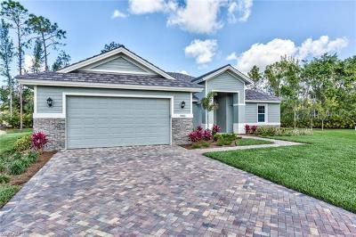 Bonita Springs Single Family Home For Sale: 10000 Hidden Pines Ln