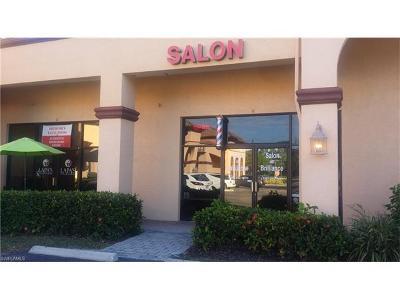 Bonita Springs Commercial For Sale: 26251 Tamiami Trl