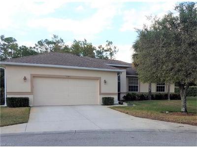 Bonita Springs Single Family Home For Sale: 9380 Lake Abby Ln