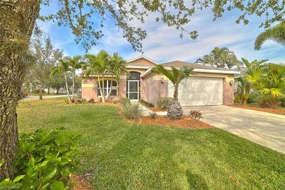 Fort Myers Single Family Home For Sale: 9021 Pittsburgh Blvd