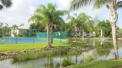 Bonita Springs Commercial For Sale: 28261 Pine Haven Way