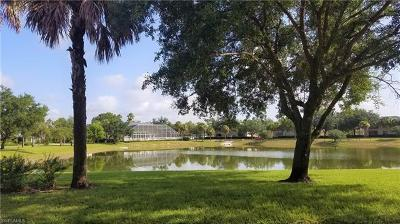 Bonita Springs Commercial For Sale: 12361 Notting Hill Ln
