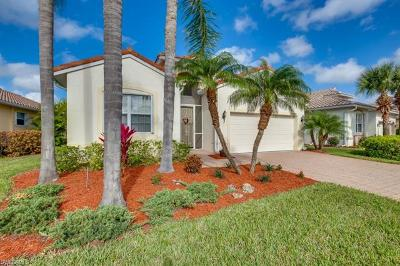 Estero Single Family Home For Sale: 20080 Ballylee Ct