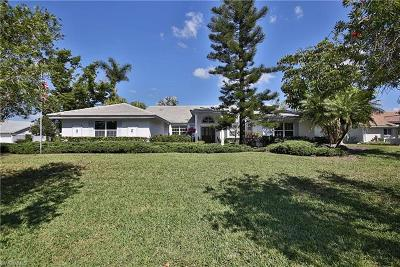 Bonita Springs Single Family Home For Sale: 9872 El Greco Cir