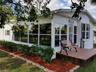 Estero Single Family Home For Sale: 10901 Snowy Egret Cir