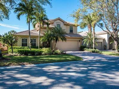 Estero Single Family Home For Sale: 9383 Oak Strand Dr