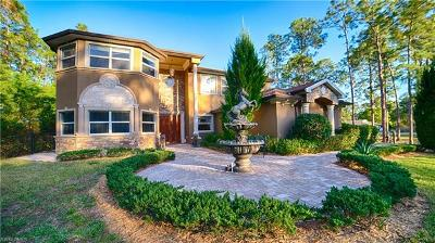 Lehigh Acres Single Family Home For Sale: 1702 Highland Ave