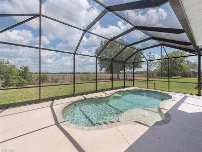 Fort Myers Single Family Home For Sale: 11520 Lake Cypress Loop
