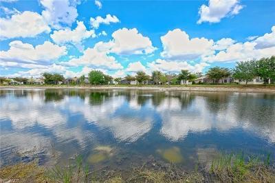 Estero Single Family Home For Sale: 9325 Sun River Way