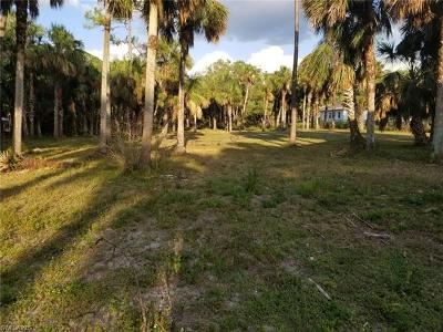 Naples Residential Lots & Land For Sale: Xxx 11 St