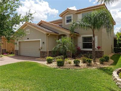 Estero Single Family Home For Sale: 13569 Messino Ct