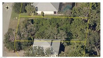 Bonita Springs Residential Lots & Land For Sale: 27259 River Royale Ct