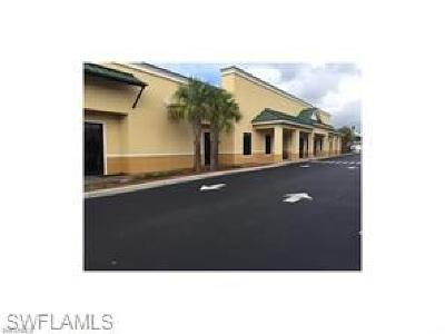 Bonita Springs Commercial For Sale: Old Us 41