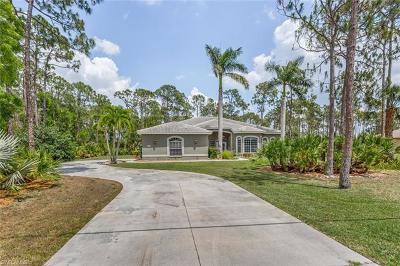 Bonita Springs Single Family Home For Sale: 25483 Luci Dr