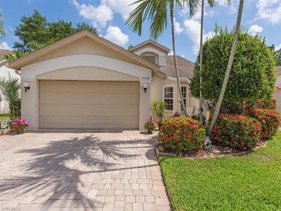 Bonita Springs Single Family Home For Sale: 25176 Golf Lake Cir