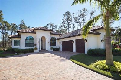 Bonita Springs Single Family Home For Sale: 25251 Catskill Dr