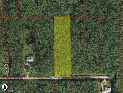 Naples Residential Lots & Land For Sale: 6th Ave SE