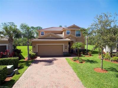 Estero Single Family Home For Sale: 13073 Cardeto Ct