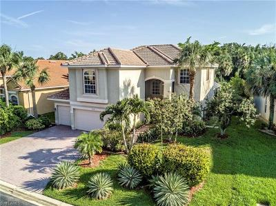 Estero Single Family Home For Sale: 9238 Estero River Cir
