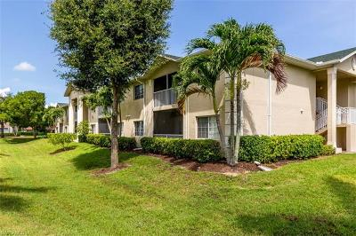Bonita Springs Rental For Rent: 27083 Matheson Ave #208