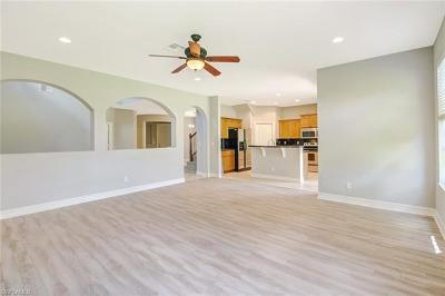 Estero Single Family Home For Sale: 10115 Silver Palm Dr