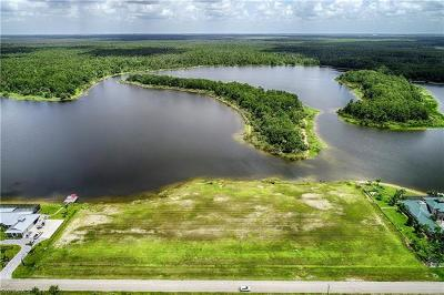 Naples Residential Lots & Land For Sale: 455 Shady Hollow Blvd W